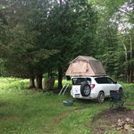 Duck pond campsite
