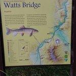 Watts landing