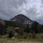 Rock creek custer nf