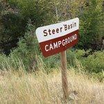 Steer basin