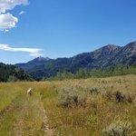 Santaquin meadows