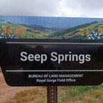 Seep springs