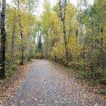 Silver falls provincial park