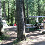 Tin can flat campground