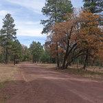 Fire road 108