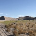 Big dune dispersed
