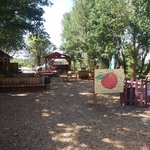 Big b delicious orchards