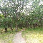 Jorgens hollow campground
