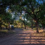 San antonio bosque park