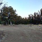 West mesa road dispersed