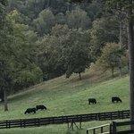 Walnut hollow ranch rv campground