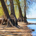 Butte view campground lake minatare sra