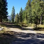 Beaver creek campground gallatin nf