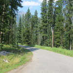 Beaver creek campground gallatin nf