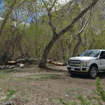 Pine creek inyo nf