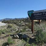 Walker pass campground