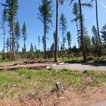 Big larch campground