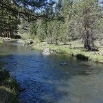 Ash creek