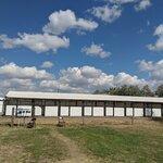 Harney county fairgrounds