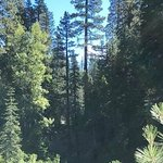 High bridge campground california
