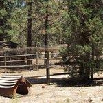 Sky ranch in big bear
