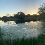 Cedar creek resort