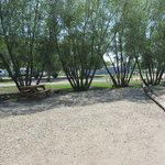 Meadowlands rv park