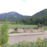 Greys river dispersed