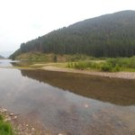 Trout creek dispersed
