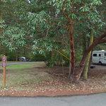 Upper forest campground fort worden state park