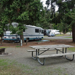 Upper forest campground fort worden state park