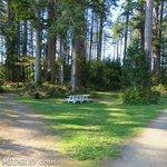 Bush pioneer county park