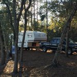 Oxbow campsite tates hell state forest
