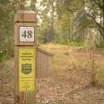 Warren bluff tates hell state forest