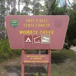 Womack creek campground tates hell state forest