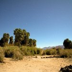 Photo 13 of 13 of Saline Valley Warm Springs - Death Valley