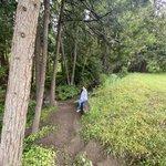 Nelson falls rv park