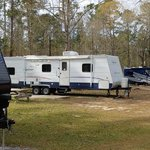 Swayback campground