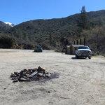 Brush creek sequoia nf
