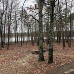 Pinewoods lake campground