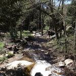 Cedar creek campground sequoia nf