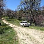 Evans road campsite 2