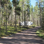Lodgepole campground anaconda mt