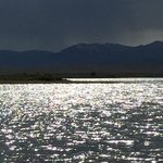 Walden reservoir dispersed