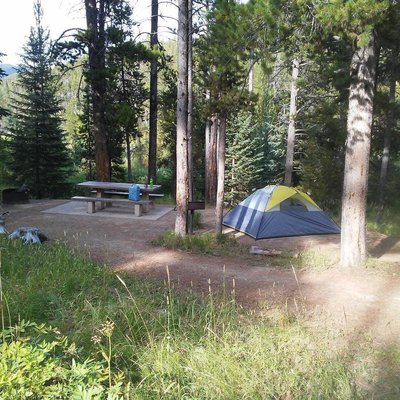 Many pines campground