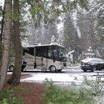 Rv campground ponderosa sp