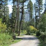 Pine creek campground gallatin nf