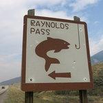 Raynolds pass