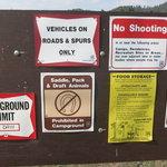 Riverview campground beaverhead deerlodge nf