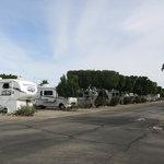 Desert paradise rv resort